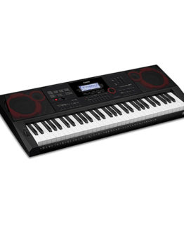 CASIO CT-X3000 C7