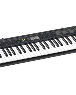 CASIO CTK-245