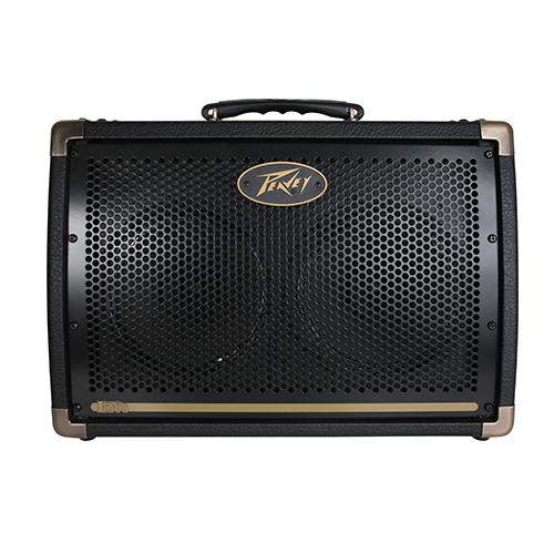 PEAVEY Ecoustic E208 Acoustic Amp Combo