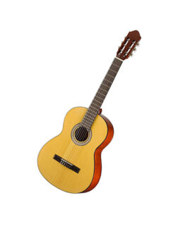 Walden N450 Standard Solid Spruce Top Nylon Classical